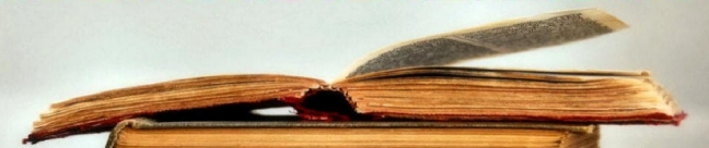 cropped-book-banner-61.jpg